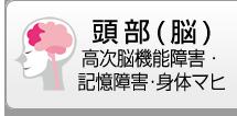 頭部(脳) 高次脳機能障害・記憶障害・身体マヒ